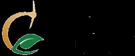 Cactus Mine Logo